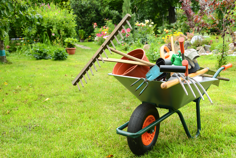 Corso di giardinaggio 15 giugno 2019