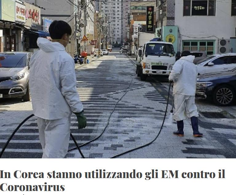 Iniziativa ambientale in Corea del sud
