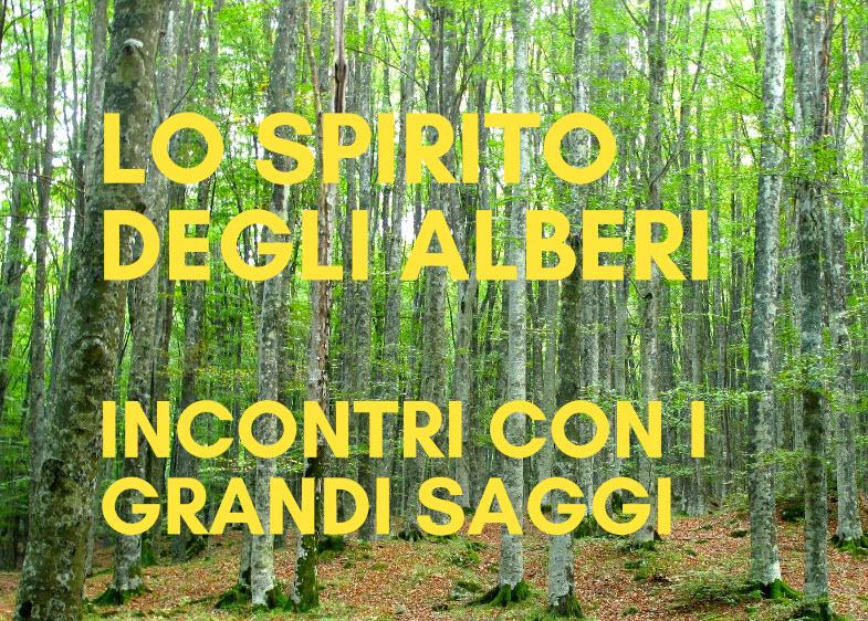 Vivi lo Spirito degli Alberi